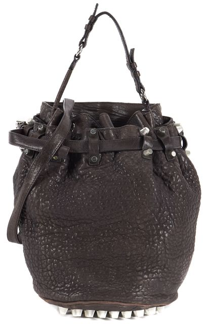 ALEXANDER WANG Chocolate Brown Studded Leather Diego Bucket Crossbody