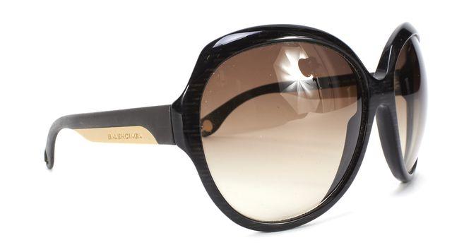 BALENCIAGA Dark Brown Gum Frame Oval Frame Sunglasses
