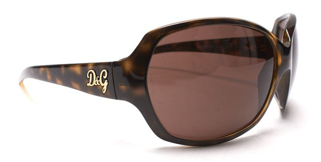 D&G Brown Tortoise Square Acetate Sunglasses